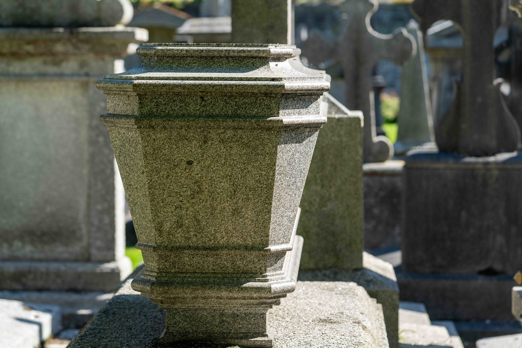 TODAY I VISITED GLASNEVIN CEMETERY [TODAY I USED A SONY 90MM MACRO LENS]-155991