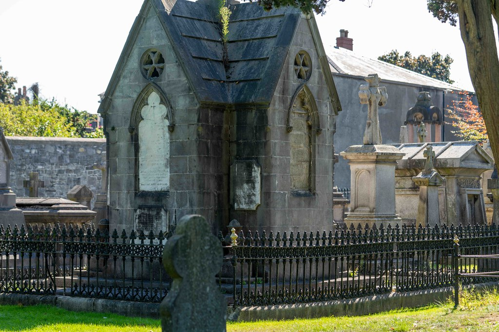 TODAY I VISITED GLASNEVIN CEMETERY [TODAY I USED A SONY 90MM MACRO LENS]-155996