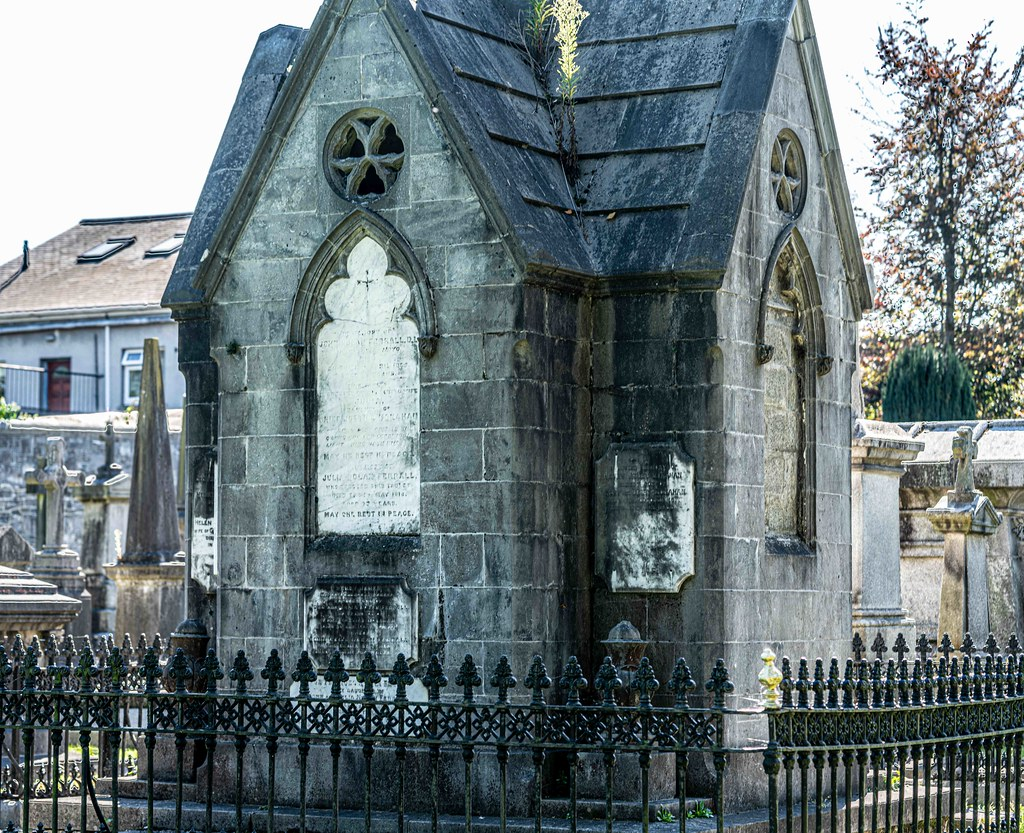 TODAY I VISITED GLASNEVIN CEMETERY [TODAY I USED A SONY 90MM MACRO LENS]-155999