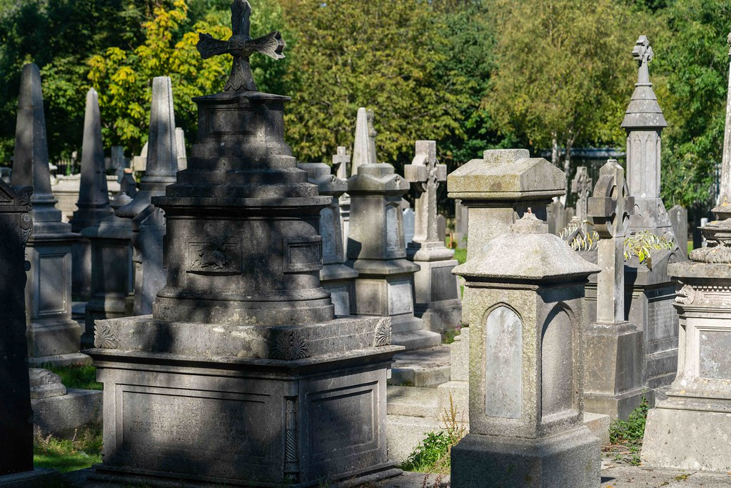TODAY I VISITED GLASNEVIN CEMETERY [TODAY I USED A SONY 90MM MACRO LENS]-155972