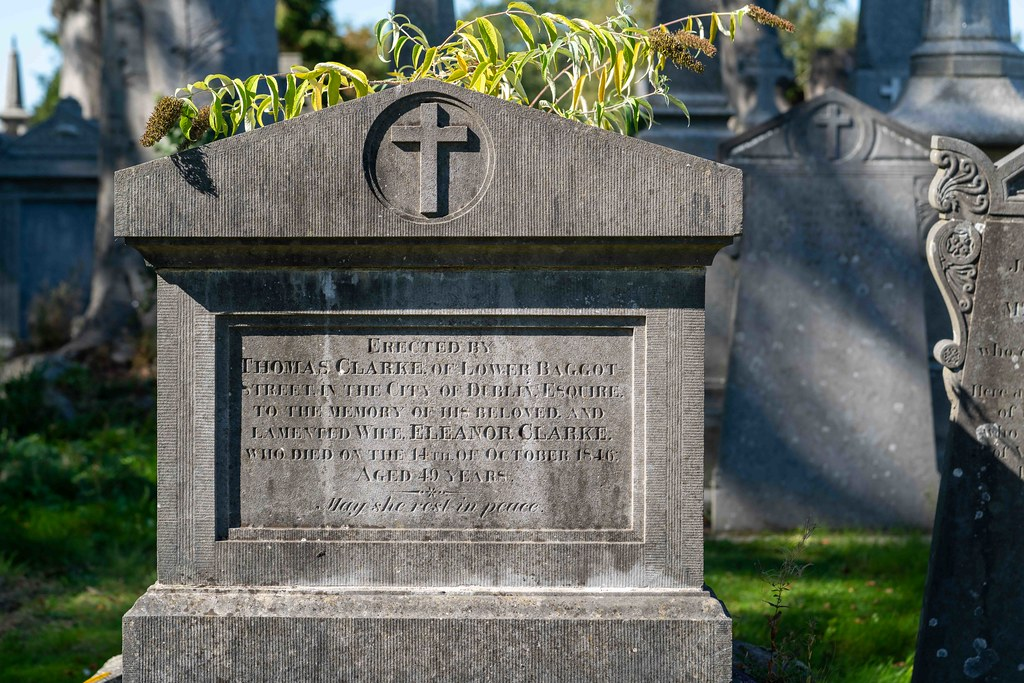 TODAY I VISITED GLASNEVIN CEMETERY [TODAY I USED A SONY 90MM MACRO LENS]-155975