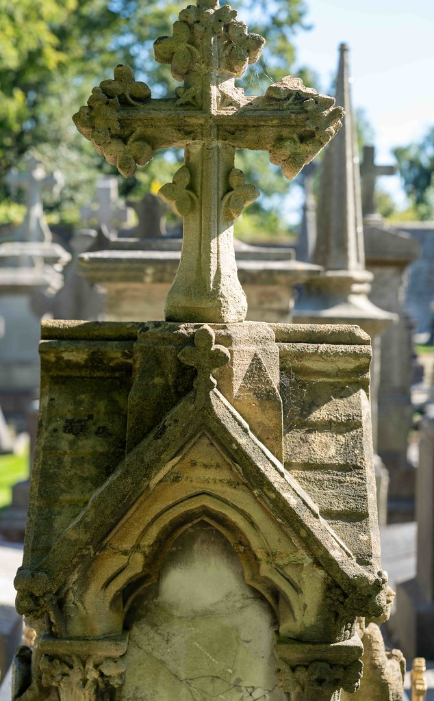 TODAY I VISITED GLASNEVIN CEMETERY [TODAY I USED A SONY 90MM MACRO LENS]-155989