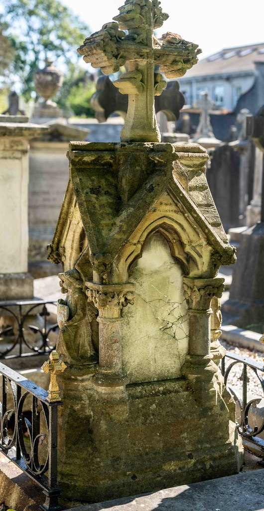 TODAY I VISITED GLASNEVIN CEMETERY [TODAY I USED A SONY 90MM MACRO LENS]-155990