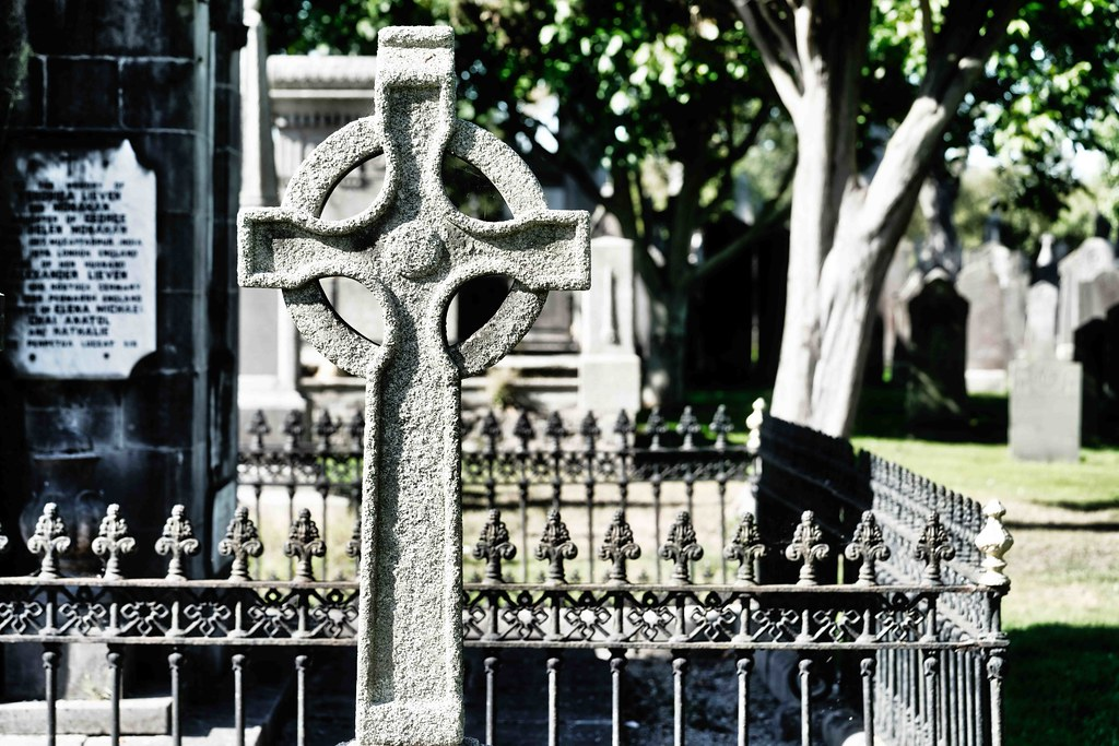 TODAY I VISITED GLASNEVIN CEMETERY [TODAY I USED A SONY 90MM MACRO LENS]-156004