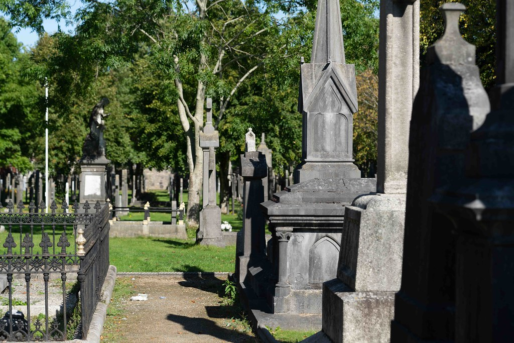 TODAY I VISITED GLASNEVIN CEMETERY [TODAY I USED A SONY 90MM MACRO LENS]-156007