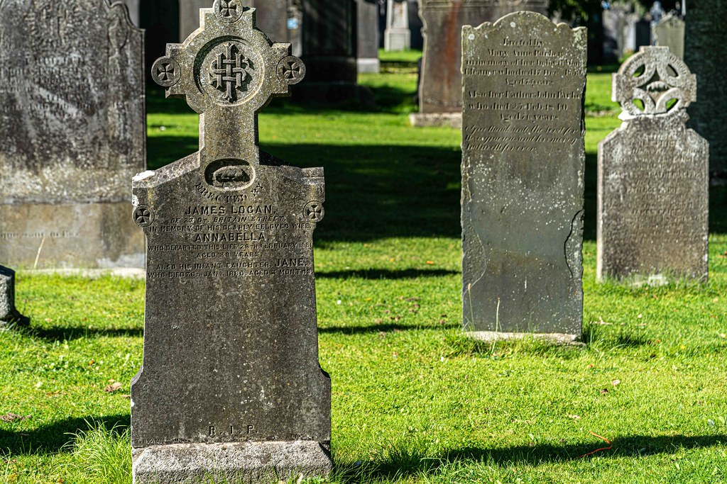 TODAY I VISITED GLASNEVIN CEMETERY [TODAY I USED A SONY 90MM MACRO LENS]-156010