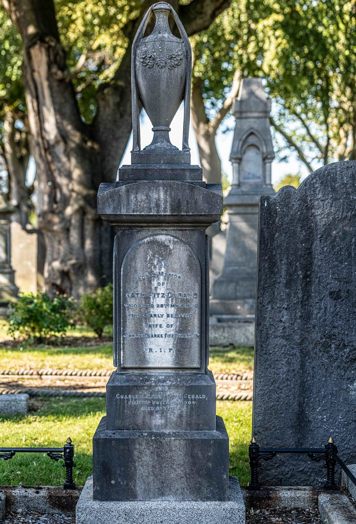 TODAY I VISITED GLASNEVIN CEMETERY [TODAY I USED A SONY 90MM MACRO LENS]-156012