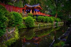 Nezu Shrine (JTeale) Tags: landscape asia travel teale eosr canon tourism tokyo japan