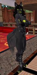 Kadyn 10 (dever_brett) Tags: secondlife sl wolf wolfess harness