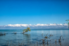 _DSC6975 Old Mission Beach (Charles Bonham) Tags: traversecitymi oldmissionpeninsula lakemichigan grandtraversebay cumulusclouds bluesky sonya7rll sonyzeissfe1635mmf4 charlesbonhamphotography