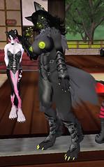 Kadyn 3 (dever_brett) Tags: secondlife sl wolf wolfess harness