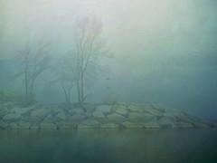 Foggy Lake Jetty (scilit) Tags: lake jetty fog trees rocks water green blue latesummer earlyfall season haze hazy foggy landscape scenery waterscape lakeontario awardtree artdigital silverdark