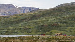 DSC06524 (Cheera studio) Tags: a7 a7ii sony canon perspective view wide norway scandinavian landscape up country moutain river road way trip cold summer