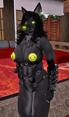 Kadyn 5 (dever_brett) Tags: secondlife sl wolf wolfess harness