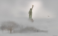 Liberty (ricardocarmonafdez) Tags: newyork nyc libertystatue estatuadelalibertad atmósfera atmosphere mood fog blur mist haze arboles trees gull seagull gaviota nikon d850