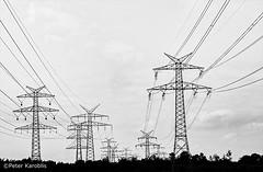Energy (peterkaroblis) Tags: schleswigholstein landschaft landscape schwarzweis blackandwhite strom electricity strommast powerpole linien lines