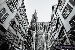 STRASBOURG (01dgn) Tags: strasbourg strasburg strazburg france frankreich fransa cathédralenotredamedestrasbourg travel holiday urban streetphotography wideangle weitwinkel canoneos77d bw sw sb perspective sephia
