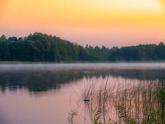 Grosser Glubigsee, Sonnenaufgang / Sunrise (eloaxe) Tags: deutschland glubigsee land natur see wendischrietz