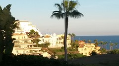 20181201_172221 (rugby#9) Tags: andalucia californiabeachresort costadelsol fuengirola clublacosta holiday complex apartment apartments view vista sandiegosuites architecture sky palmtree palmtrees trees building tree landscape water sea spain outdoor