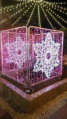 20181202_191156 (rugby#9) Tags: spain costadelsol fuengirola christmaschristmasdecoration decoration andalucia plazadelaconstitution snowflake illuminations