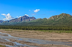 Teklanika River (http://fineartamerica.com/profiles/robert-bales.ht) Tags: alaska denali fineart flickr haybales people photo photouploads places projects river scenic stream travel nature rock outdoors water glacial landscape scene tourism beauty flow rushing meltwater icy mountain image cliff green park tundra drainage terminalface scenery waterfall scenics ravine spectacular dramatic powerful denalinationalpark ice snow valley alaskarange silt rocks glacialmilk bedrock robertbales tananavalley toklat preserve teklanikariver teklanika braided