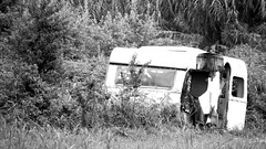 End of journey (DFA1975) Tags: death green airstreams jungle abandoned destroyed house roulotte