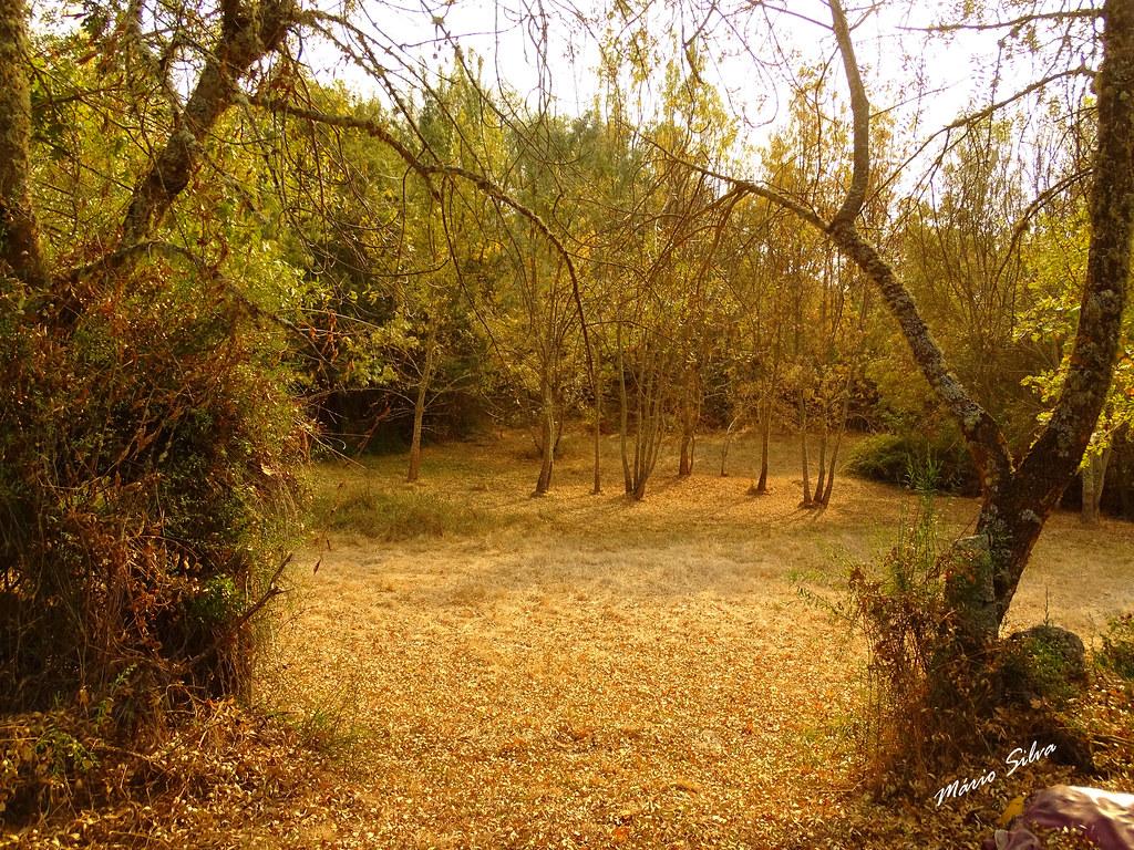 Águas Frias (Chaves) - ... paisagem do início do outono ...