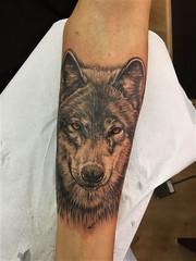 lobo   nagamoatattoo (Rafael Barba (TATTOO NAGAMOA)) Tags: wolf nagamoatattoo