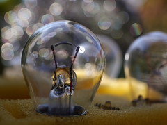 All You Need Is Light (BeMo52) Tags: autolampen bokeh bulbs carlamps foam junk macro macromondays makro rearlights schaumstoff scrap set lumixgmacro30mmf28