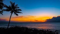 Maui sunset (niallfritz) Tags: hawaii maui sunset palm trees islands ocean clouds ngc coth coth5 npc