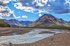 Beautiful Toklat River (http://fineartamerica.com/profiles/robert-bales.ht) Tags: alaska denali forupload haybales people photo places river scenic stream travel nature rock outdoors water glacial landscape scene tourism beauty flow rushing meltwater icy mountain image cliff green park tundra drainage terminalface scenery waterfall scenics ravine spectacular dramatic powerful denalinationalpark ice snow valley alaskarange silt rocks glacialmilk bedrock robertbales kantishnariver tananavalley toklat toclat preserve