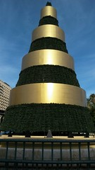 20181203_155316 (rugby#9) Tags: navidad costadelsol andalucia málaga spain decoration christmasdecoration christmastree sky bluesky tree christmas