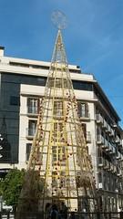 20181203_154104 (rugby#9) Tags: tree christmas navidad costadelsol andalucia málaga spain decoration christmasdecoration building christmastree sky bluesky