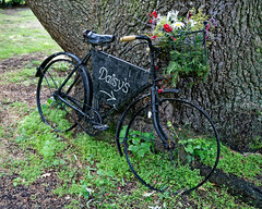 Photo of Easton Lodge Gardens, Little Easton, Essex, England ~ café bicycle sign