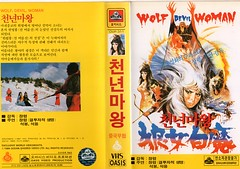 """Seoul Korea vintage VHS cover art for Hong Kong cult epic """"Wolf Devil Woman"""" (1982) - """"Oasis Import"""" (moreska) Tags: seoul korea vintage vhs cover art cult swordplay epic fantasy hong kong wolfdevilwoman 1982 adventure action magic scifi 1980s import videocassette analogue rare bmovie grindhouse oldschool spine homevideo hangul graphics fonts collectibles archive museum rok asia"""