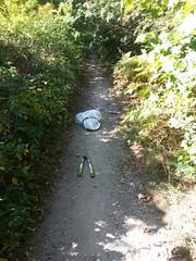 20190921_124123 (JohnSeb) Tags: johnseb sustrans volunteering leeds templenewsam ncn66 leedstpt cycleroute cycling bridleway path