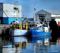 Photo of fishing boats Troon harbour Scotland
