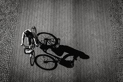 Fahrrad mit Schatten (Deinert-Photography) Tags: streetfotografie cityschlachte radfahrer deutschland schwarzweiss citylife schatten street schwarzweis bremen fujifilm23mmf14 fujifilmxt3 blackwhite fahrräder vogelperspektive fuji hb halbschatten hansestadt streetart streetphoto streetphotography ubanphotography urban xt3