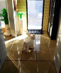 Artsand House MOC. Dog in sunlight. (betweenbrickwalls) Tags: lego afol moc interior dog sunlight interiordesign home evening