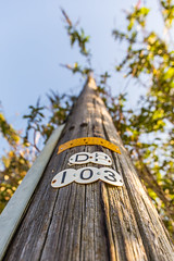#103 (EightBitTony) Tags: number canon6d telegraphpole trentlock telephonepole numbers uk project derbyshire 2019 september longeaton canon canondslr canoneos canoneos6d nottingham england unitedkingdom