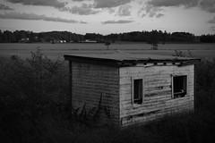 Old Shed (felix200SX) Tags: finland outside 2019 september canon 70d savijoki shed damage broken field sky blackwhite