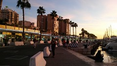 20181203_181144 (rugby#9) Tags: people lights palmtrees palmtree trees tree port harbour sea water sky apartments apartment buildings andalucia outdoor malaga costadelsol spain sunset cloud