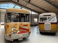 🇩🇰KS-Trolleybus 101 (Leyland-Chassis) der Københavns Sporveje (msslovi0) Tags: bus museum sporvejsmuseet skjoldenæsholm trolley trolleybus obus leyland københavnssporveje