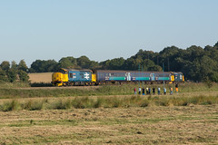 37409 Oulton Marshes 21/09/19 - The Greater Anglia Short Set Finale. 37409 'Lord Hinton' pleases the crowd as the Tractors thrash past Oulton Marshes with the final working from Lowestoft to Norwich. (rhayward92) Tags: 37409 class 37 lord hinton drs direct rail services br large logo biritish oulton marshes greateranglia east anglia uk railway loco hauled 2j85