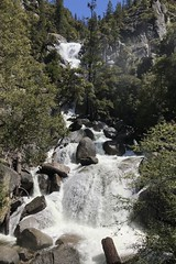 #YosemiteNationalPark #waterfall (s) #June2019 (Σταύρος) Tags: nationalpark yosemite june2019 yosemitenationalpark waterfall park sierranevada ahwahnee bigmouth flora fauna trees forrest vacation vacanze kalifornien californië kalifornia καλιφόρνια カリフォルニア州 캘리포니아 주 cali californie california northerncalifornia カリフォルニア 加州 калифорния แคลิฟอร์เนีย norcal كاليفورنيا ragingwaters ragingwater
