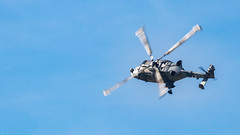 41e  Sanicole Airshow - september 15, 2019 - 987 (Frederic_P.) Tags: sanicoleairshow sanicole airshow sigma150600contemporary agustawestland aw159 wildcat hma2 helicopter chopper heli