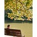 Lire sur un banc pour aux dernières heures de l'été
