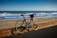 Coasting (ianrwmccracken) Tags: sunshine bicycle water brick sony bike shore defy beach road sea wall scotland fife wave riverforth tarmac a6000 coast cycling giant