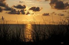 SUNSET (Fimeli) Tags: nature natur strand beach sonnenuntergang sunset meer see nordsee wasser abendlandschaft abend evening wolken himmel sky clouds