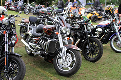 Dawlish Motorcycle Show (SteveRotherPhotography) Tags: bike motorbike motorcycle bikeshow devon dawlish machine transport vehicle triumph triumphmotorcycle